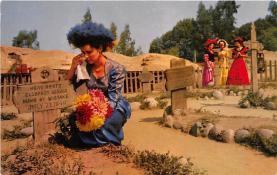 amp005145 - Knott's Berry Farm, Ghost Town, California, CA, USA Postcard