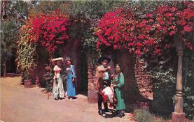 amp005148 - Knott's Berry Farm, Ghost Town, California, CA, USA Postcard