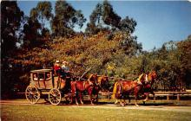 amp005207 - Knott's Berry Farm, Ghost Town, California, CA, USA Postcard