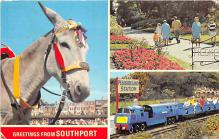 amp005276 - Southport, Indiana, IN, USA Postcard