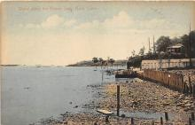 amp007124 - Savin Rock, Connecticut, CT, USA Postcard