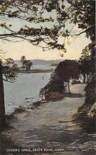 amp007129 - Savin Rock, Connecticut, CT, USA Postcard