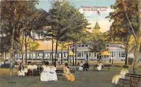 amp007161 - Savin Rock, Connecticut, CT, USA Postcard