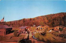 amp032050 - Lake George, New York, NY, USA Postcard