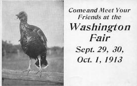 Washington Fair, Sept 19, 30, October 1, 1913