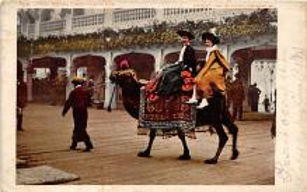 amp100260 - Amusement Park Postcard Post Card