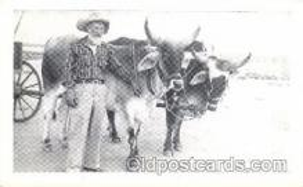 and000024 - Animal Drawn Postcard Post Card
