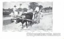 and000035 - Buffalo, Old Mexican cart Animal Drawn Postcard Post Card
