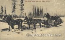 and000058 - Fairbanks Winter Mail and Stage Service Animal Drawn Postcard Post Card
