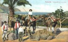 and000066 - Tenerife, Transporte en Camellos Animal Drawn Postcard Post Card