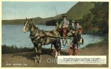 and000077 - Irish Jaunting Car Animal Drawn Postcard Post Card