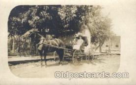 and000093 - Animal Drawn Postcard Post Card