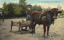 and000096 - Rural transportation in Dixie land Animal Drawn Postcard Post Card