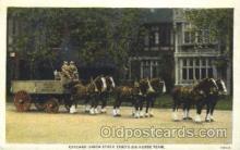 and000099 - Chicago Union Stock, Six horses team Animal Drawn Postcard Post Card