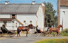 and000121 - The Penna Dutch Country Amish Boys Postcard Post Card