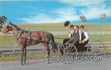 and000124 - Traditional Dress Amish Courting Buggy Postcard Post Card