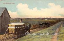 and000132 - Hauling Cotton to Gin  Postcard Post Card