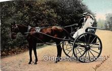 and000133 - Horse Carriage  Postcard Post Card