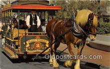 and000135 - Horse Drawn Streetcar Walt Disney World Postcard Post Card