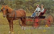 and000142 - Horse & Buggy Days Southeastern Ohio Postcard Post Card