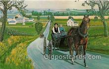 Amish Courting Carriage
