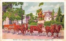 and000152 - Wilson & Co, Internationally Famous Six-Horse Clydesdale Team Meat Packers, Chicago Postcard Post Card
