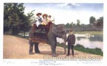 ani001052 - Animal Postcard Post Card