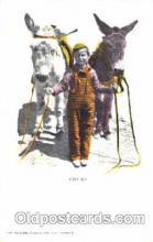 ani001067 - Animal Postcard Post Card