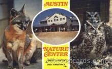 ani001117 - Gray fox and great horned owls Animal Postcard Post Card