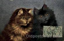 Series 1616 Artist Sperlich Cat, Cats Post Card Post Card