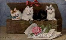art151109 - Series 1509 Artist Sperlich Cat, Cats Post Card Post Card