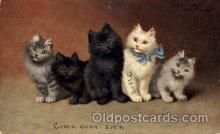 art151117 - Series 648 Artist Sperlich Cat, Cats Post Card Post Card