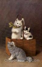 Artist Sperlich Cat, Cats Post Card Post Card