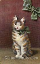 art151124 - Series 1299  Artist Sperlich Cat, Cats Post Card Post Card