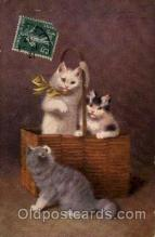 art151125 - Series 3047 Artist Sperlich Cat, Cats Post Card Post Card