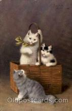 art151126 - Artist Sperlich Cat, Cats Post Card Post Card