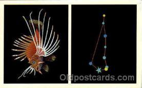 ast001014 - Piscis Austrinus The Southern Fish Astrology Postcard Post Card
