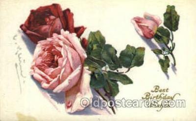 art035181 - Artist Catherine Klein (Germany) Flower Postcard Post Card