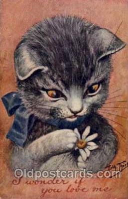 art081086 - Arthur Thiele Cat Postcard Post Card