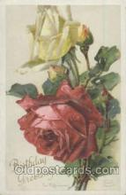 art035156 - Artist Catherine Klein Postcard Post Card