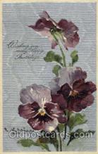 art035195 - Artist Catherine Klein (Germany) Flower Postcard Post Card