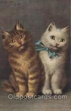Artist Sperlich, Cat, Cats, Postcard Post Card