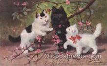 art151079 - Artist Sperlich, Cat, Cats, Postcard Post Card