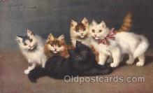 art151080 - Artist Sperlich, Cat, Cats, Postcard Post Card
