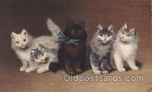 art151083 - Artist Sperlich, Cat, Cats, Postcard Post Card