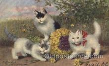 art151085 - Artist Sperlich, Cat, Cats, Postcard Post Card