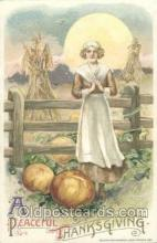 art201108 - Artist Schmucker Thanksgiving Greeting Postcard Post Card