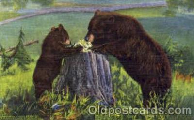 ber001014 - Bear Bears Postcard Post Card