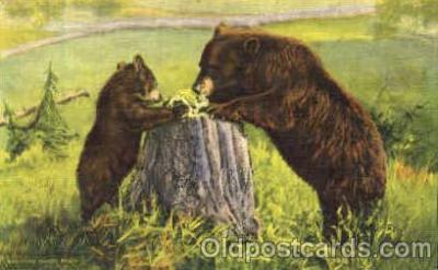 ber001016 - Bear Bears Postcard Post Card