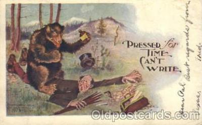 ber001084 - Bear, Bears, Postcard Post Card